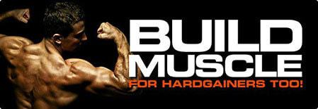 build-muscle-plan